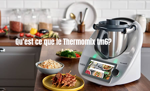 avis thermomix tm6